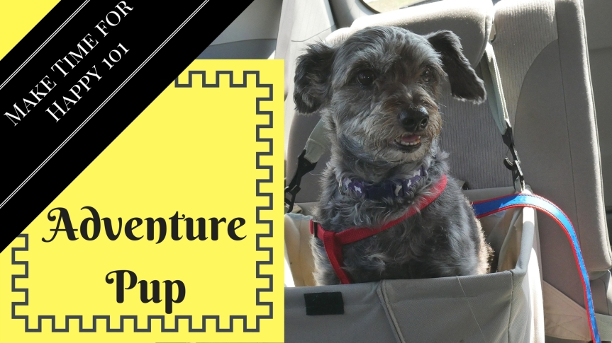 Adventure Pup: Happy Pup Poetry