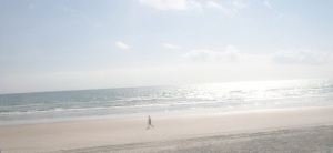 beach scene 10